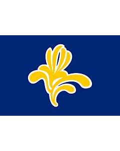 Flag: Brussels