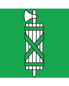 Flag: Canton of St. Gallen