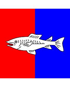 Flag: Swiss city Nyon