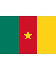 Flag: Cameroon