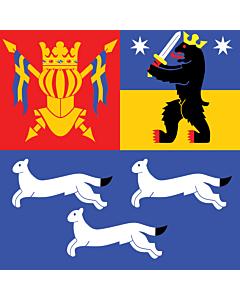 Flag: Western Finland