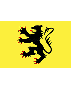 Flag: Representing the  Lion of Flanders