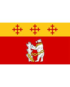 Flag: Warwickshire