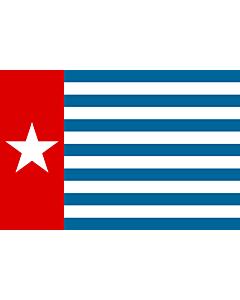 Flag: Unofficial Morning Star flag