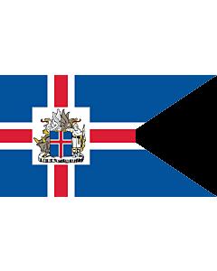 Flag: Presidential Standard of Iceland | Icelandic Presidential