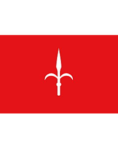 Flag: Province of Trieste