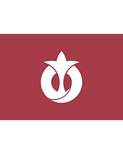 Flag: Aichi Prefecture