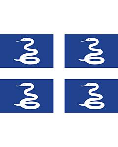 Flag: Martinique