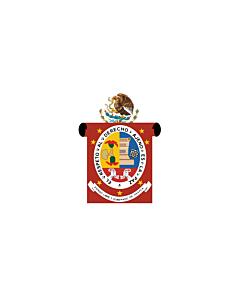 Flag: Oaxaca