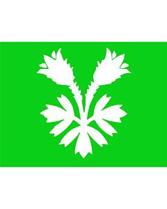 Flag: Oppland