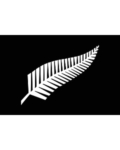 Flag: A Silver Fern flag, a proposed new New Zealand