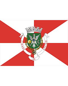 Flag: Aveiro District