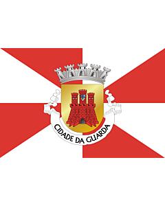 Flag: Guarda District