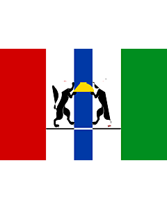 Flag: Novosibirsk Oblast