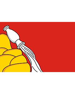 Flag: Voronezh Oblast