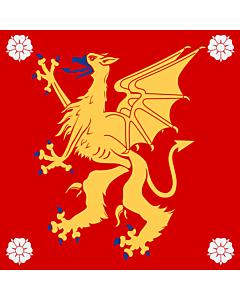 Flag: Östergötland County