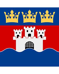 Flag: Jönköping County