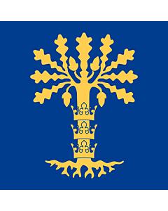 Flag: Blekinge County
