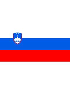 Flag: Slovenia